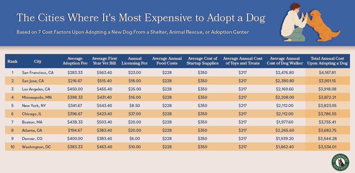 List of US cities where it is most expensive to adopt a dog