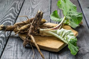 burdock root supplement