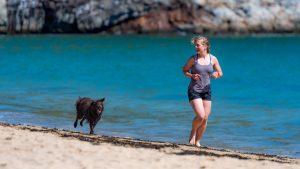 dog and woman on beach